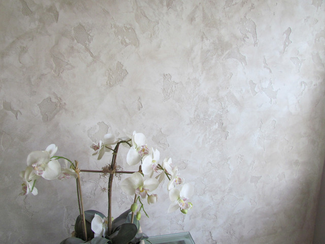 Green Venetian Plaster Walls : Venetian plaster local san diego painting gorgeous