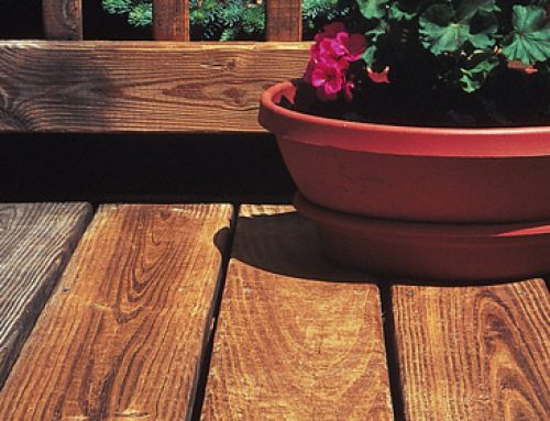 Painting vs. Staining Wooden Decks