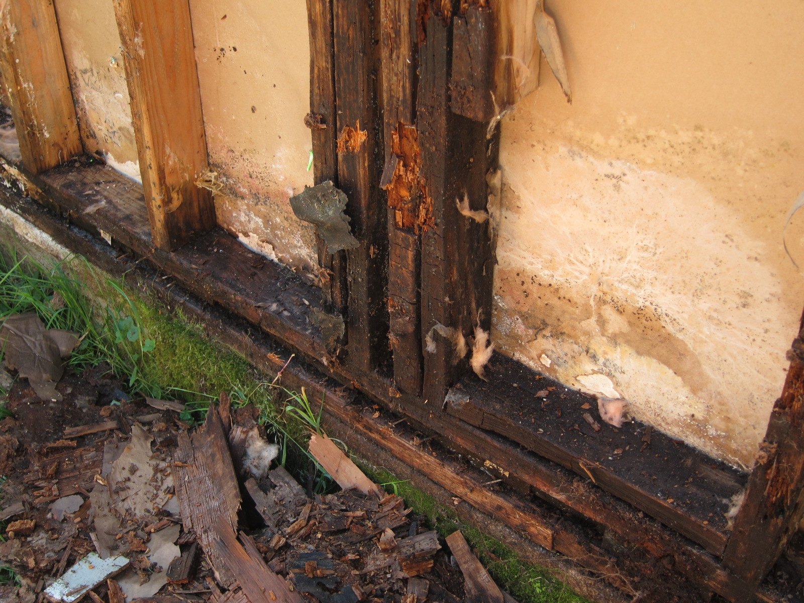 Dry Rot Repair Local San Diego Painting