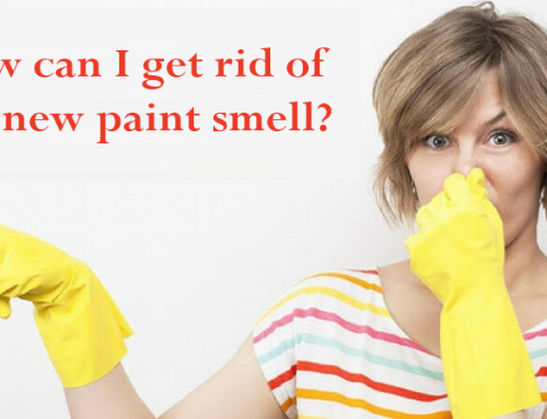 New Paint Smell? How can you get rid of it?